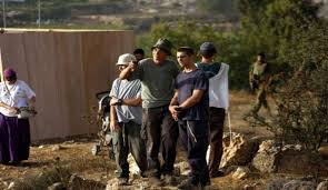 إصابات إثر اعتداء المستوطنين على مزارعين في خربة الطويل شرق نابلس