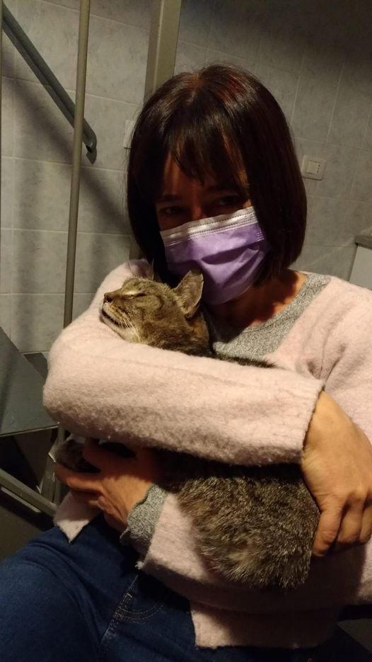معجزة.. إيطالية تعثر على قطها المفقود منذ 8 أعوام