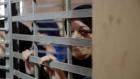 35 أسيرة فلسطينية في سجون الاحتلال الاسرائيلي