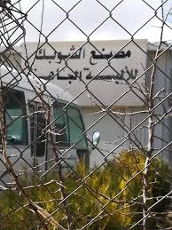 النائب البدول تطالب بإعادة تشغيل مصنع الشوبك للألبسة