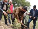وزير الزراعة يتفقد الواقع الزراعي والحرجي في بني كنانة