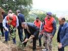 إربد انطلاق حملة أشجارنا مستقبلنا