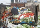 The initiative to allocate containers for surplus fruits and vegetables Reservation of grace and reduce the proportion of waste