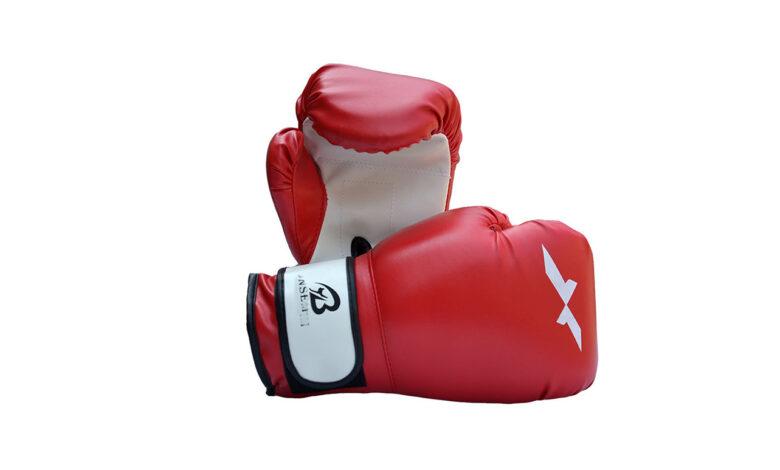 منتخب الملاكمة يبدأ مشاركته في بطولة التشيك الدولية
