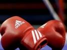 فوزان لمنتخب الملاكمة ببطولة التشيك الدولية
