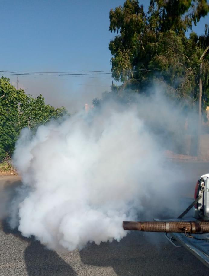 بلدية السلط تبدأ حملة رش المبيدات الحشرية