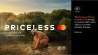 Start Something Priceless with Mastercard at Expo 2020 Dubai