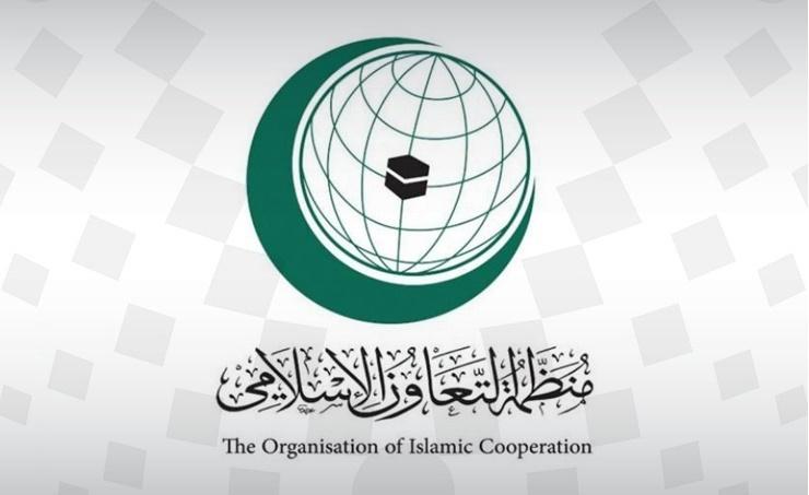 منظمة التعاون الإسلامي تدعو إلى وقف العنف وتغليب المصلحة العليا للشعب اللبناني