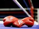منتخب الملاكمة يشارك في بطولة العالم بصربيا